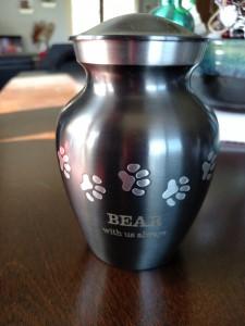 Bear Albro 2